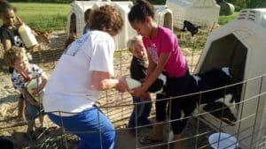 a woman and children bottle feeding a calf
