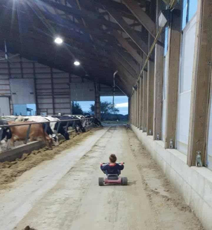 Inside New Day Dairy's barn