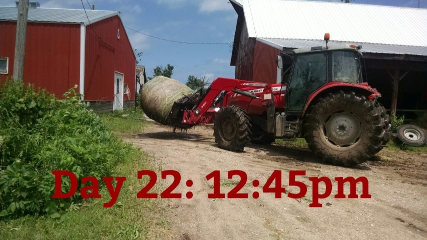 Feeding a Bale with a Tractor