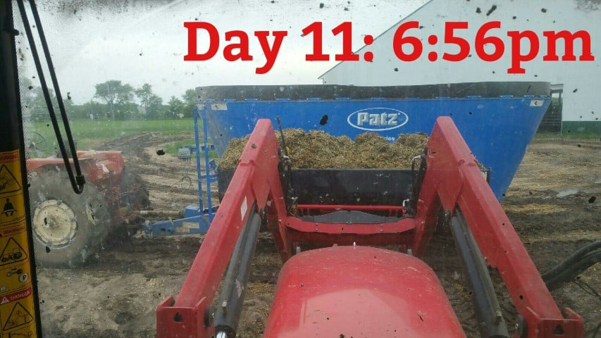 Mixing Feed for the Cows