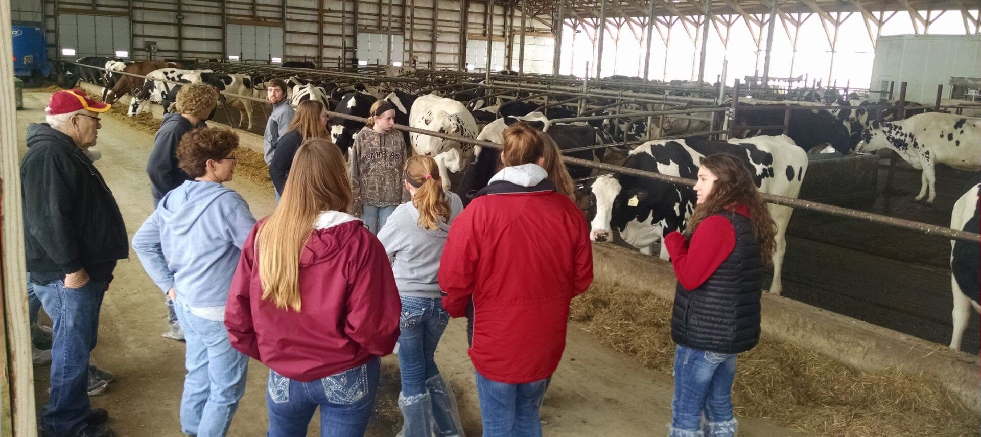 Group of people standing in a dairy barn with cows.