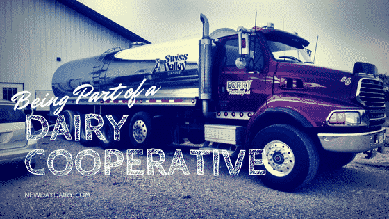 Being Part of a Dairy Cooperative