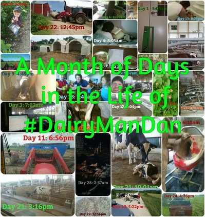 A Month of Days in the life of #DairymanDan