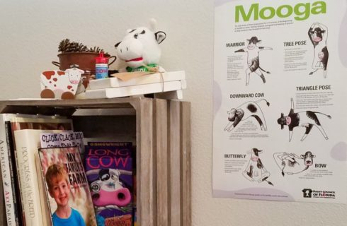 Old gray milk box on its side filled with books and cow related tchotchkes on top and a yoga and cow poster on the wall